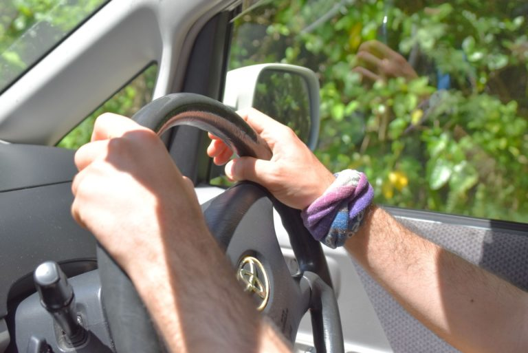 10 Road Rules for Niue You Need to Know