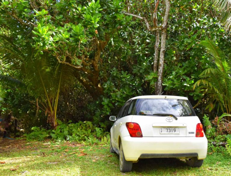 How Much Does it Cost to Rent a Car in Niue?