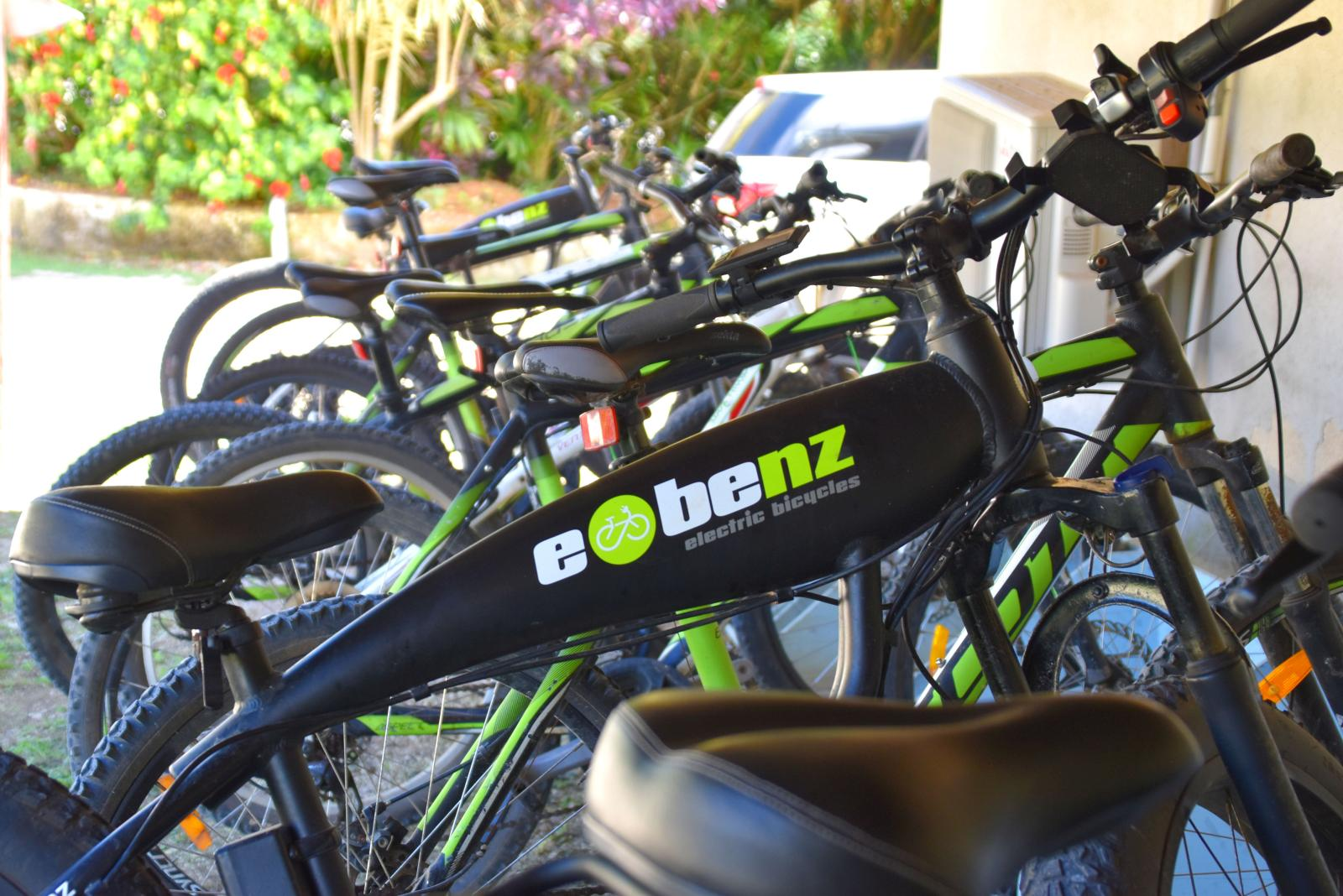 Where to Rent Bikes in Niue