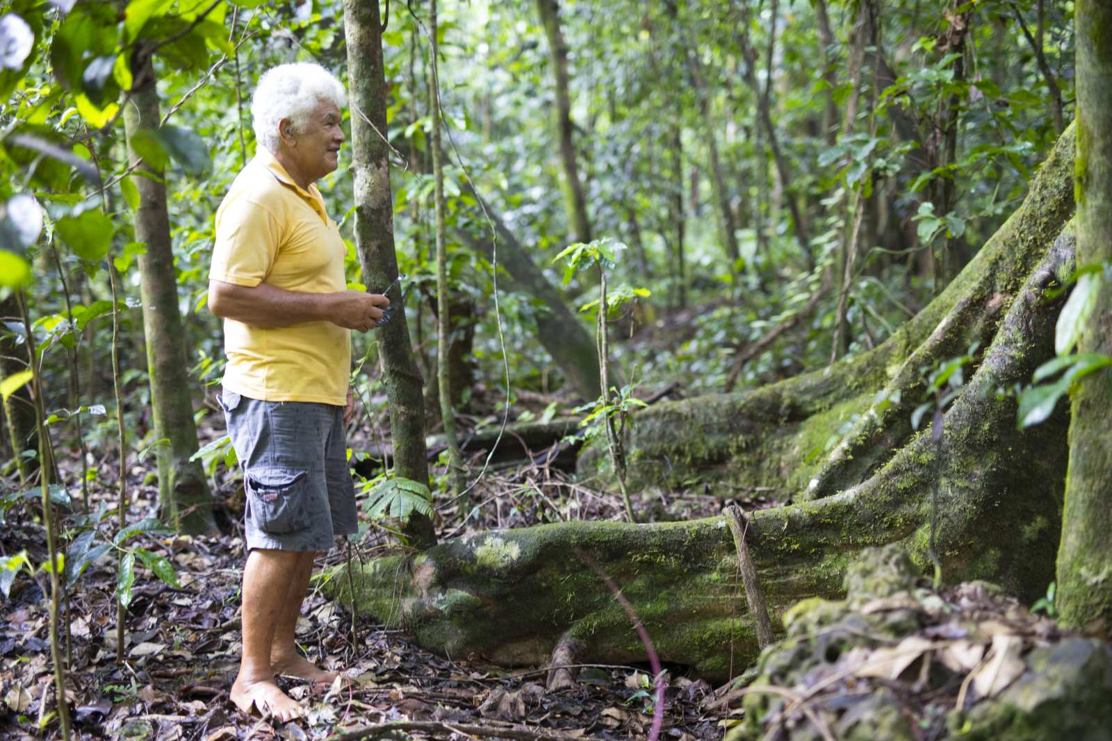 The Best Guided Tours in Niue