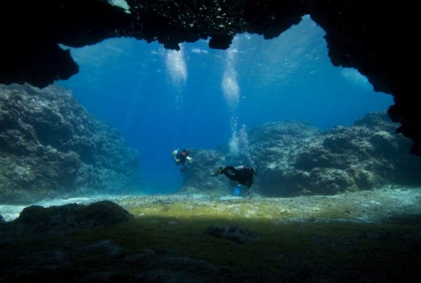 10 Amazing Reasons to Scuba Dive in Niue