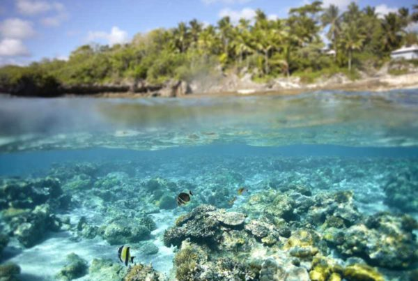 Niue's Best Tidal Activities & Attractions