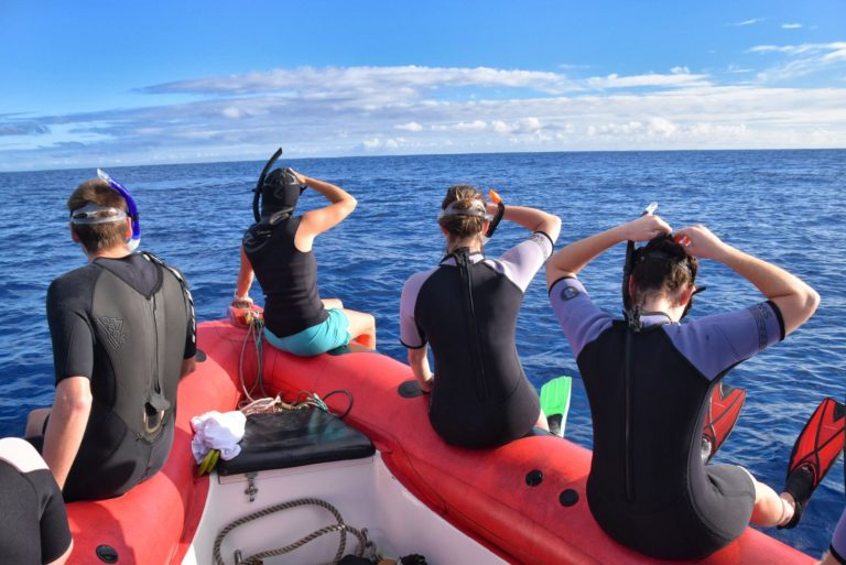 The Best Guided Snorkelling Tours in Niue