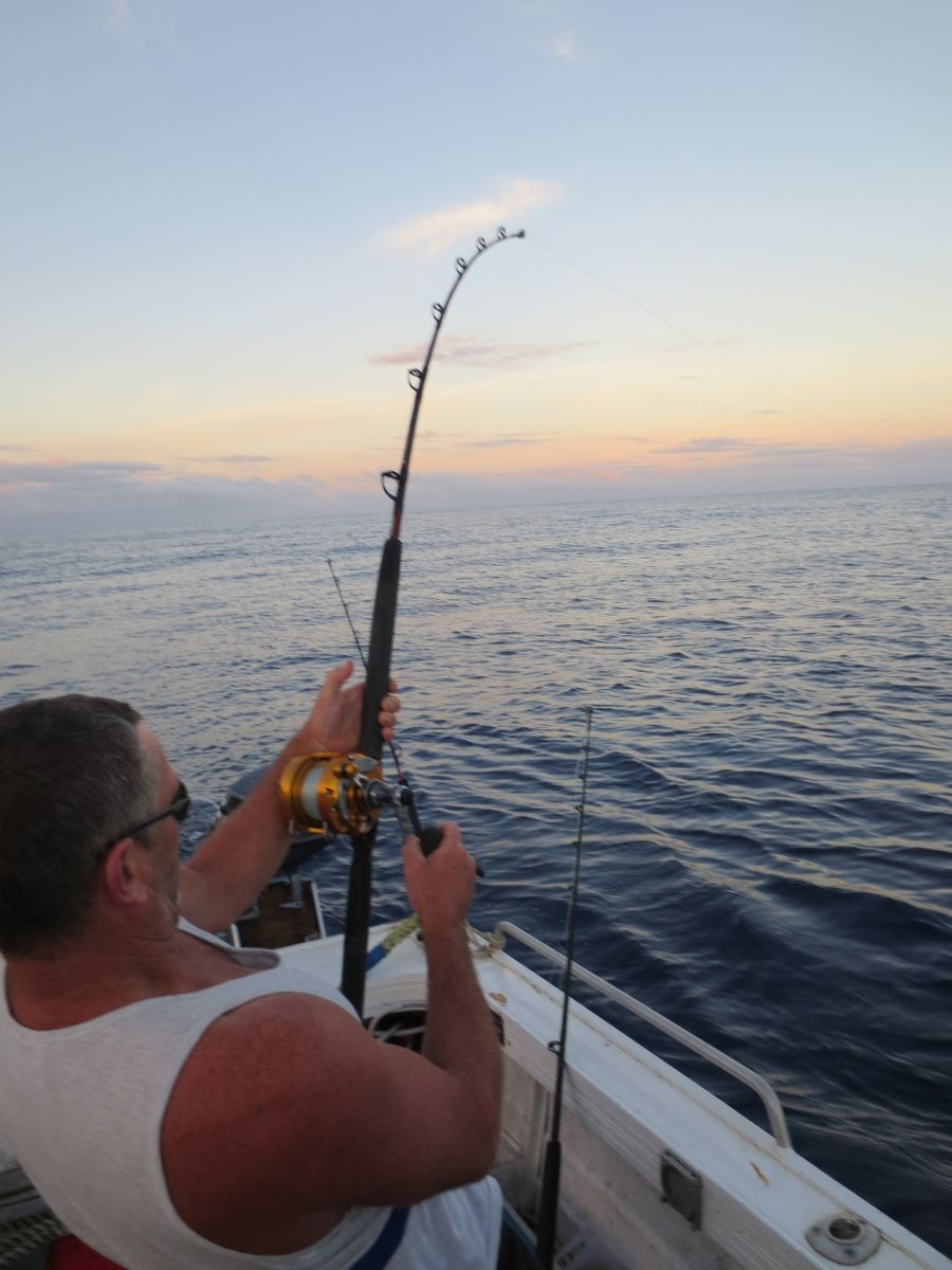 The Best Time for Fishing in Niue