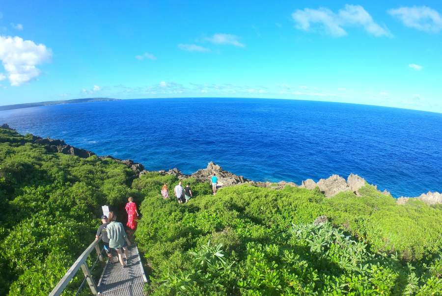 10 Amazing Lookouts for Watching Whales in Niue