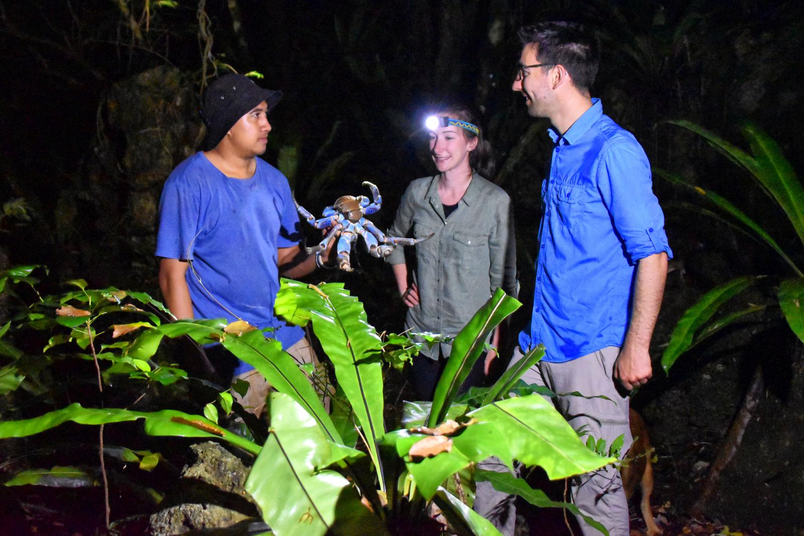 7 Best Nature Tours in Niue