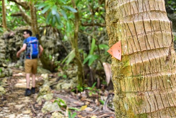 10 Best Hikes in Niue