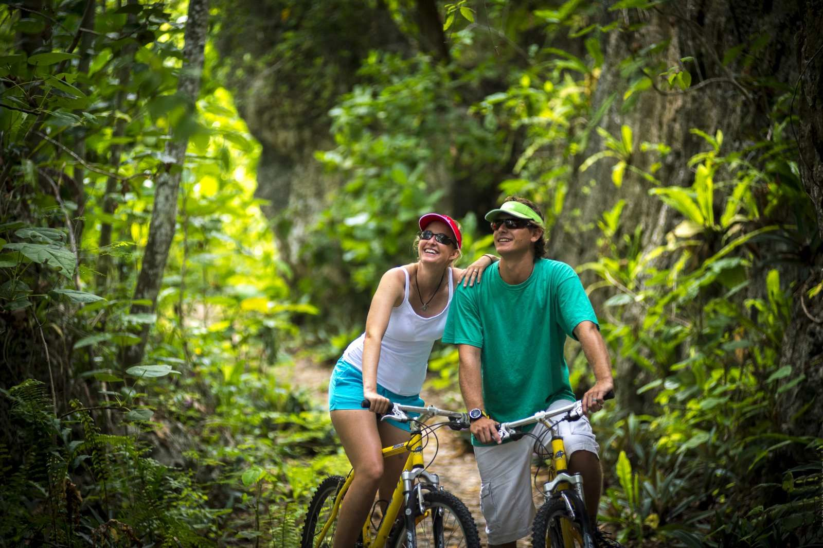 6 Eco-Friendly Alternatives to Renting a Car in Niue